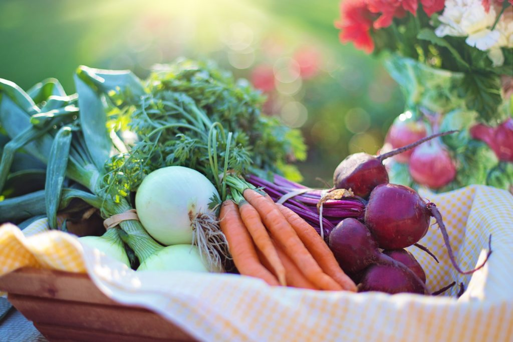 A basket of crisp, fresh vegetables in a garden on a warm, sunny day.